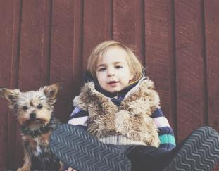 10-best-dog-breeds-kids-selection-guide