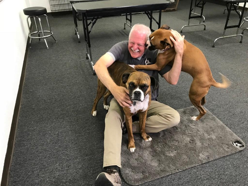 Canine Massage on Table vs Floor