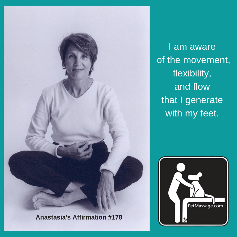 I am aware of the movement, flexibility, and flow that I generate with my feet.