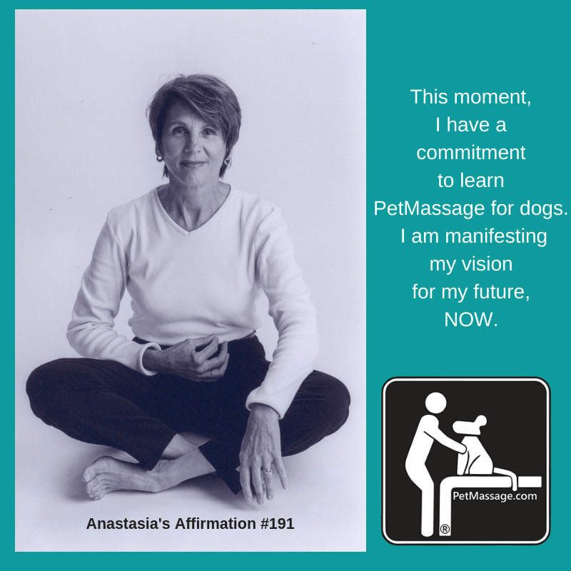 This moment, I have a commitment to learn PetMassage for dogs. I am manifesting my vision for my future, NOW.