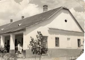 1961.-ben Czuczor Teca gyűjtése