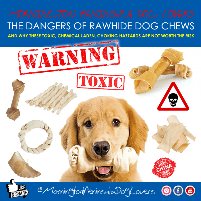 To help prevent choking, intestinal obstruction and death, we need more rawhide bones safety warning posters like this.