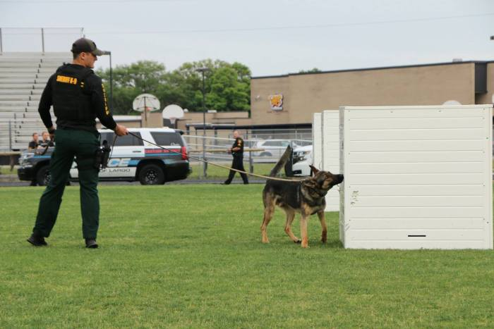 Police dogs play a vital role in detecting narcotics, some eventually become dual certified patrol/narcotics K-9s