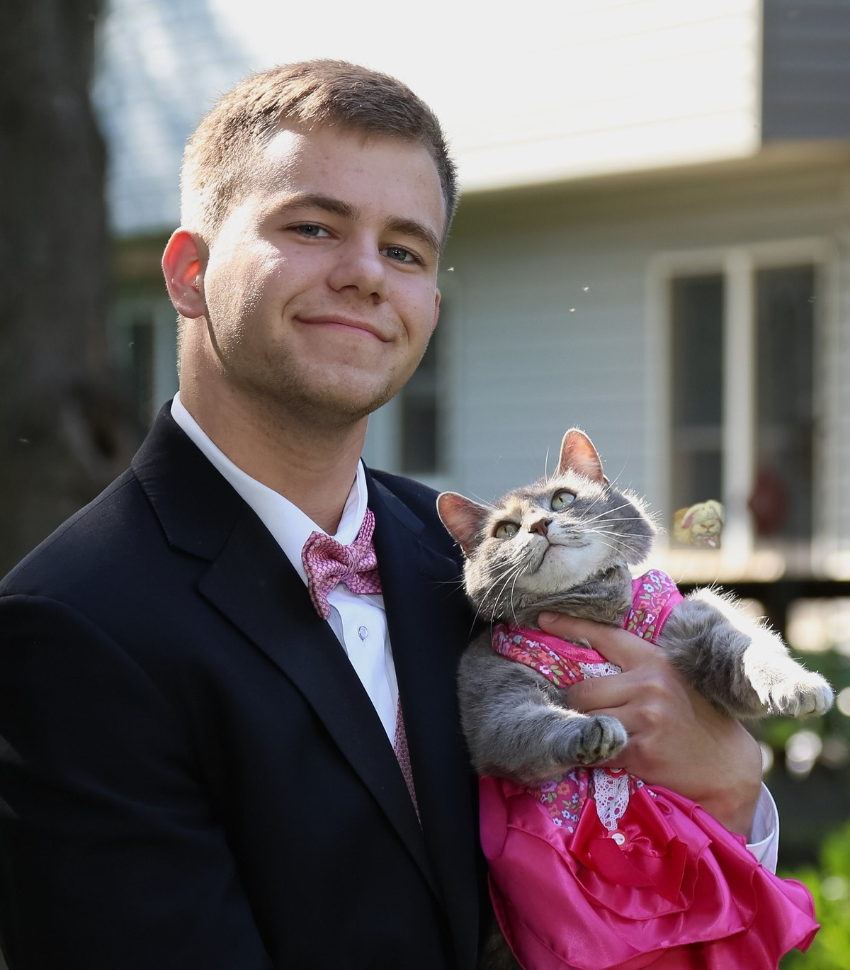 cat goes to prom