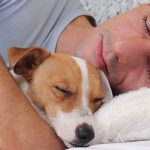 How You Can Provide Your Pet with The Best Possible Home