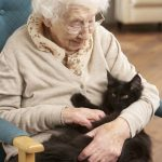 Seniors and Pets: Pawfect Partners- the Special Bond Between Animals and the Elderly