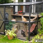 10 BENEFITS OF CATIOS FOR CAT OWNERS