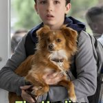 New Netflix Show About a Boy and His Emotional Support Dog