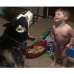Lil Boy Gets His Dog To Howl in a Hilarious Contest