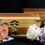 How Much Does Pet Cremation Normally Cost?