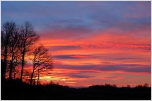 6-Februar ein toller Morgen, danach eher grau