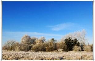 22-Januar etwas Schnee, ein wunderbarer Wintertag!