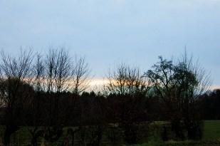 13-März früh, Bergeler Wald