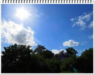 3-Juli *home* - wieder mal draußen, dann doch noch mal etwas Regen
