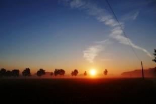 7-August wunderbarer Morgen!