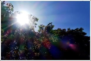 30-August *home* - strahlend blauer Himmel
