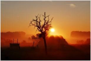 16-Oktober ein wunderbarer Morgen, Stromberg/Sebke