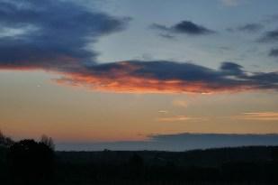 9-November Bergeler Wald, ein schöner Morgen