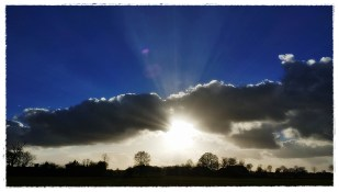 2-Dezember nachmittags schien endlich wieder die Sonne