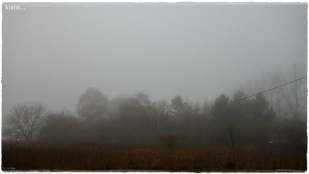 19-Dezember sehr nebelig - *home*