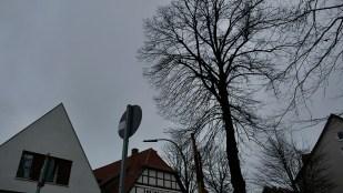 28-Dezember wieder auf dem Weg ... graue Tage