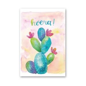 wenskaart verjaardag cactus Dreams Petra van Dreumel