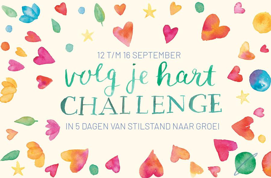 volg je hart challenge petra van dreumel