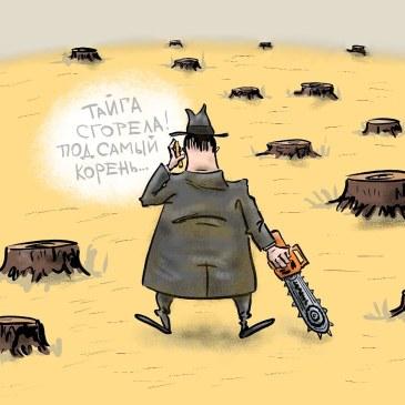 Сибирский цирюльник..