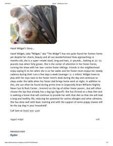 Hazel – Pet Rescue Crew 2