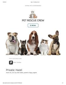 Hazel – Pet Rescue Crew