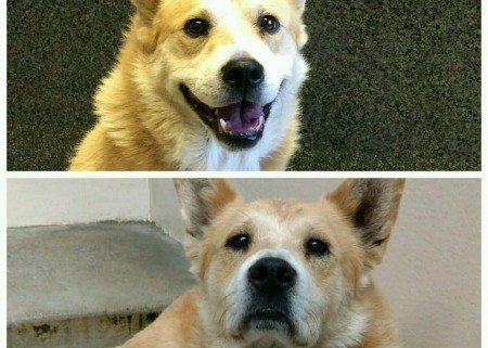 tucker-before-and-after
