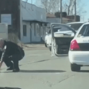 Officer rescues little dog from busy intersection