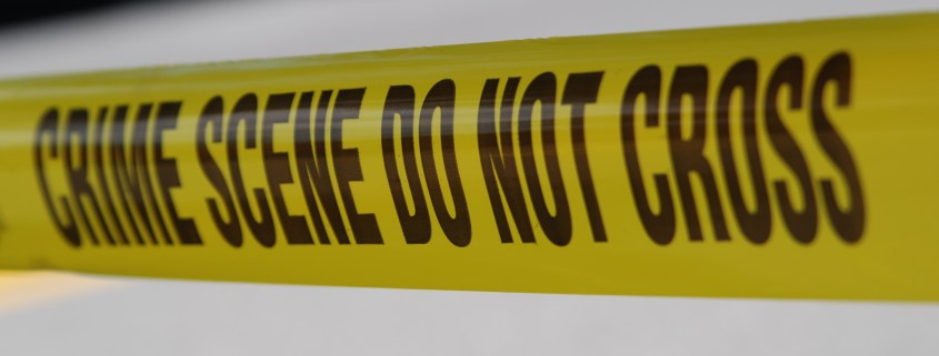 Family dog shot and killed