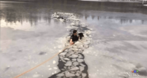 Officer rescues dog from icy lake
