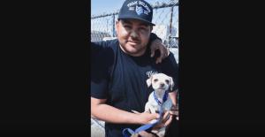 Chihuahua's hero