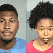 Couple accused of torturing cats