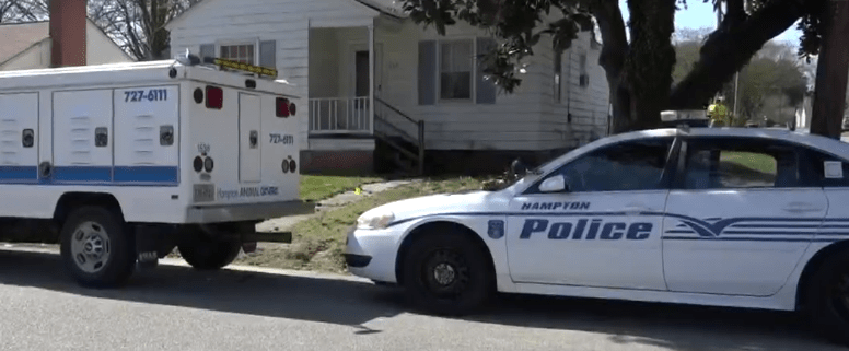 18 dead dogs found inside of house