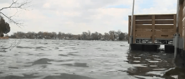 Body of dog found in plastic container in lake