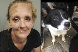 Homeless woman choked and beat puppy