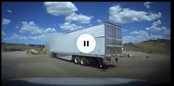 terrifying moment truck drove away with dog tethered to the back