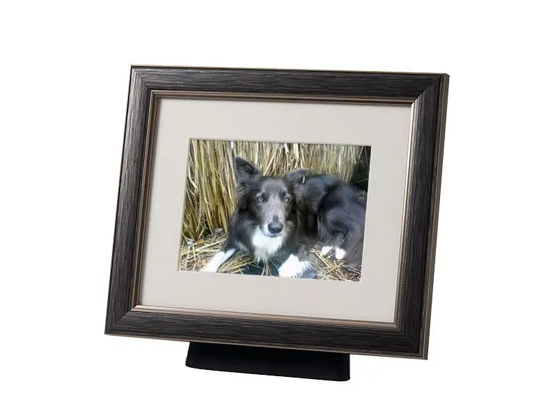 Beautiful discreet photo frame pet urn in Pewter. Also available in silver, black, champagne and bronze. For pet dog, horse, cat ashes. Can be personalized.
