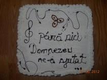 Tort si pizza (5)