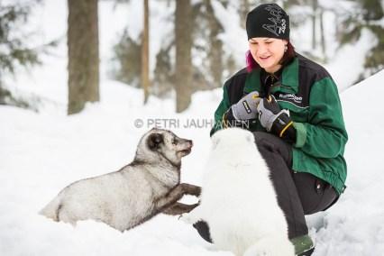 Ranuan eläinpuisto valokuvaaja Petri Jauhiainen
