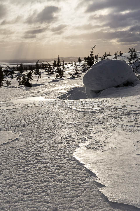 Vapautus talven taakasta