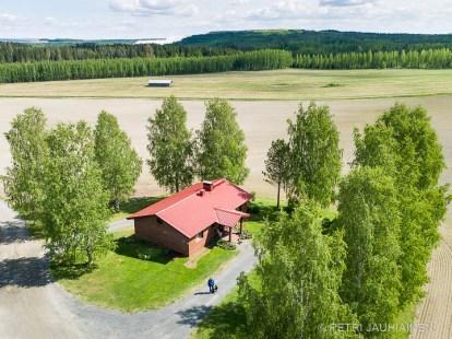 Kipsivuoren varjossa, Suomen kuvalehti