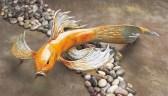 "Big Kahuna, Medium: Bronze Catalog: BK5 Big Size: 8"" x 22"" x 11"" Artist: Frogman"
