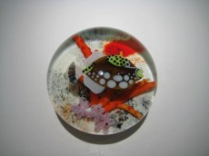 Trigger Fish Weight Artist: Orient & Flume Catalog: 124-7