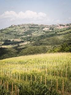 Montalcino vypadá na dosah, ale zdání klame
