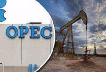 روسنفت تقلص إنتاج النفط من وحدة سخالينمورنفتجاز بموجب اتفاق أوبك+