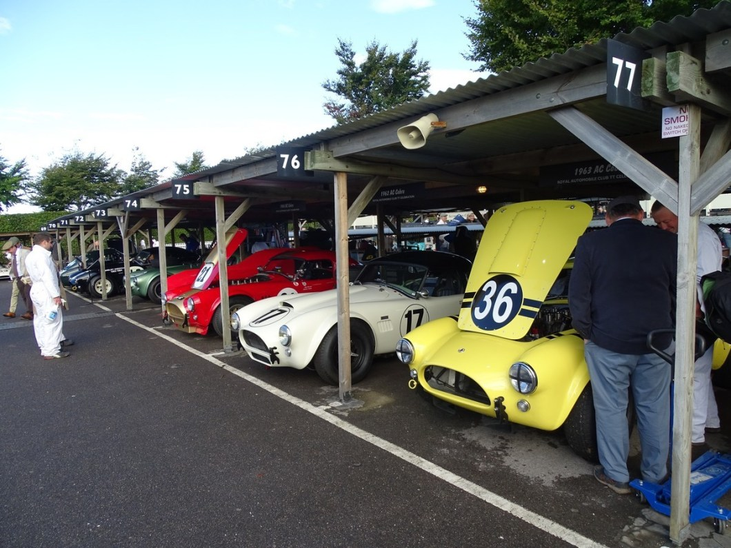 Cobras in the paddock at the Goodwood Revival 2017